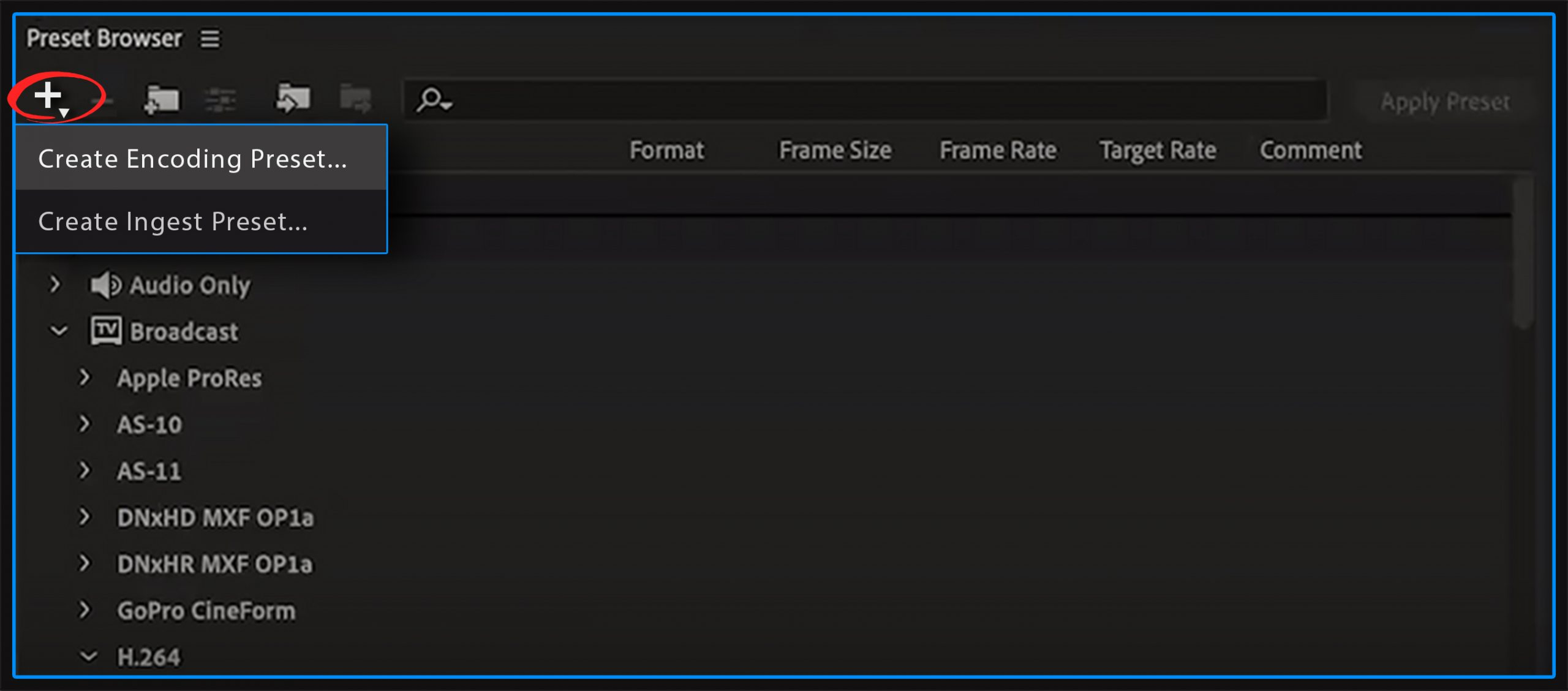 4k video editing proxy premiere pro encoding preset