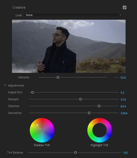 Lumetri Color Creative Section