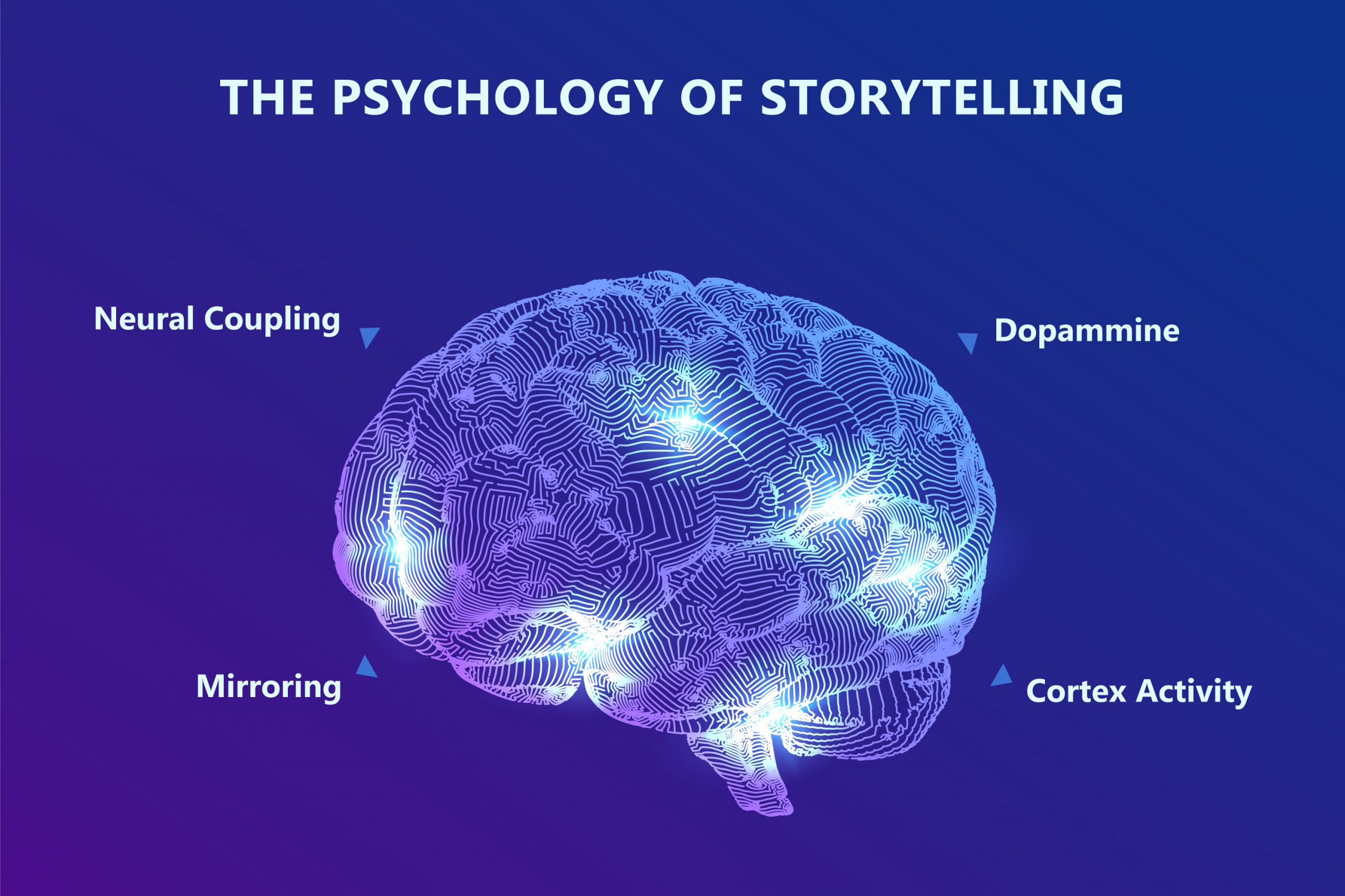 Brain-And-Storytelling