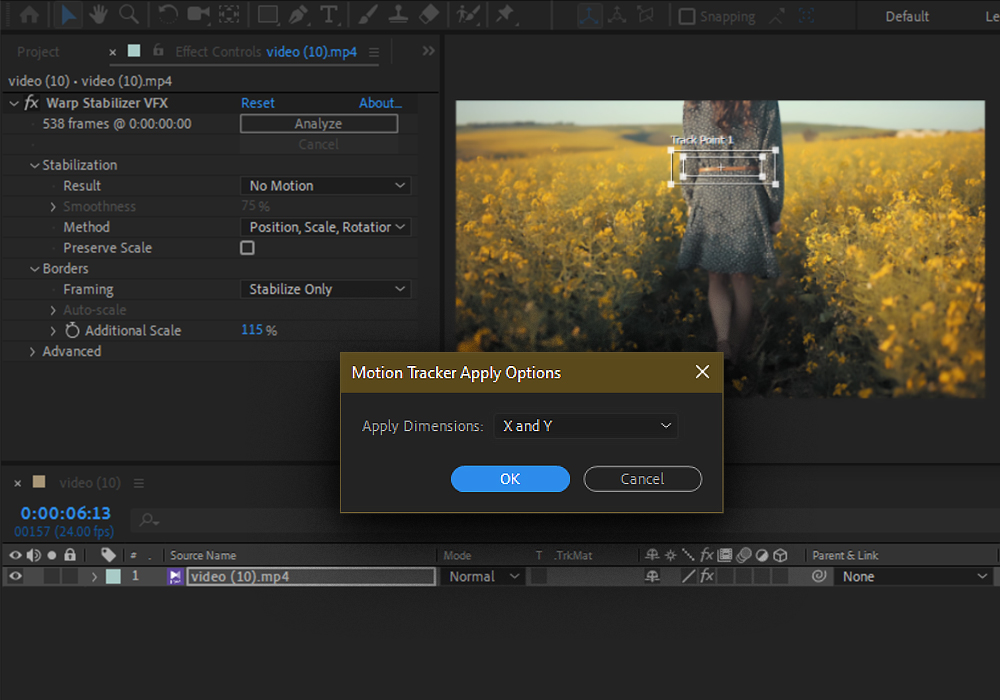 Motion-Tracker-Apply-Options