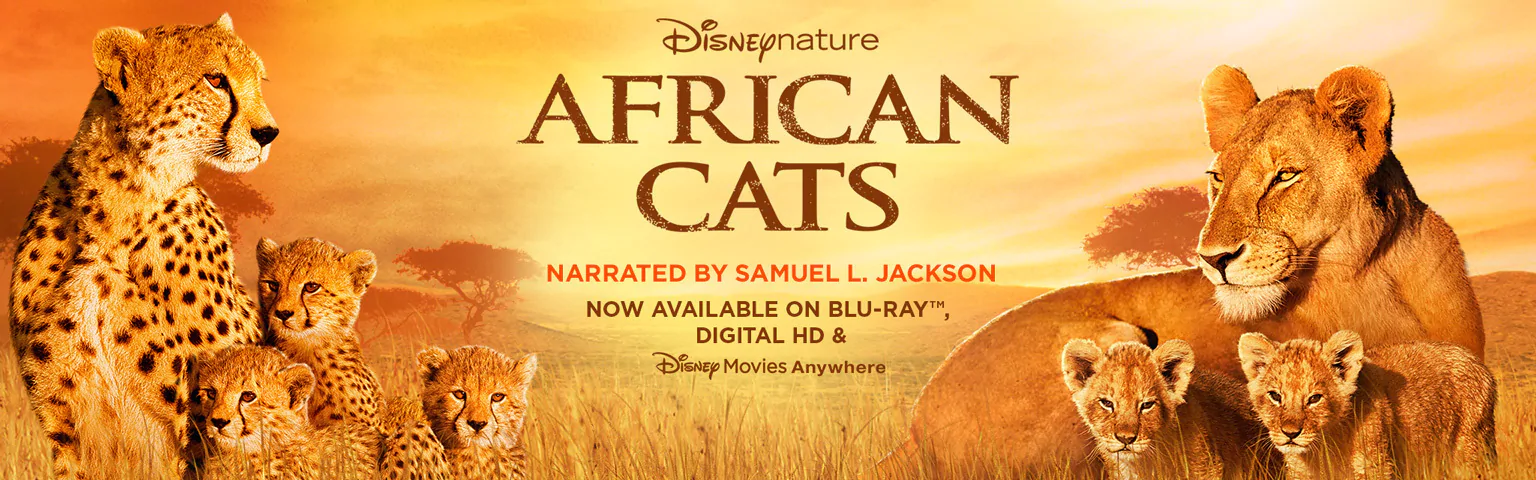 african-cats-documentary-narrated-samuel-jackson